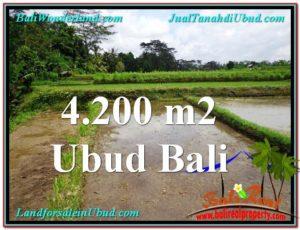 DIJUAL MURAH TANAH di UBUD BALI 4,200 m2 di Ubud Tampak Siring