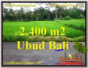 JUAL TANAH di UBUD BALI Untuk INVESTASI TJUB563