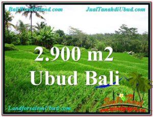 JUAL TANAH MURAH di UBUD 29 Are di Ubud Tampak Siring