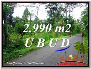 DIJUAL TANAH di UBUD TJUB591