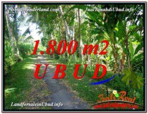 INVESTASI PROPERTY, TANAH di UBUD DIJUAL MURAH TJUB597