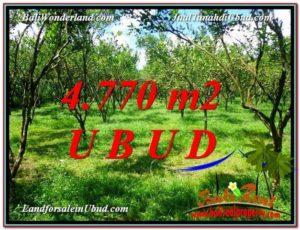 JUAL TANAH di UBUD BALI 4,770 m2 View kebun