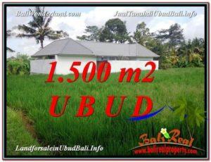 TANAH MURAH di UBUD BALI 1,500 m2 di Sentral Ubud