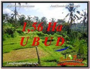 INVESTASI PROPERTY, TANAH di UBUD BALI DIJUAL MURAH TJUB601