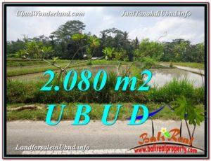 TANAH di UBUD DIJUAL 2,080 m2 di Ubud Pejeng