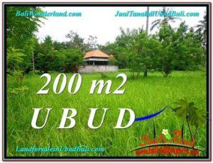 TANAH MURAH di UBUD BALI 200 m2 View Kebun Link Villa