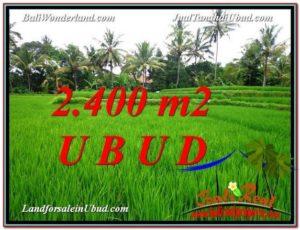 DIJUAL MURAH TANAH di UBUD BALI 24 Are di Sentral Ubud