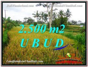 JUAL TANAH di UBUD BALI 2,500 m2 View Sawah link Villa dan Restorant