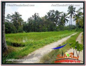 TANAH di UBUD BALI DIJUAL MURAH 3,200 m2 View Sawah link Villa