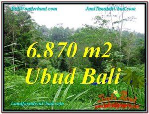 TANAH JUAL MURAH UBUD BALI 69 Are View Kebun, Sungai dan Tebing