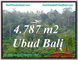 TANAH di UBUD BALI DIJUAL MURAH Untuk INVESTASI TJUB603