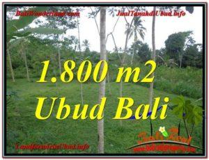 JUAL MURAH TANAH di UBUD 1,800 m2 View Tebing dan kebun
