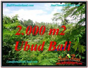 TANAH di UBUD JUAL MURAH 20 Are View Tebing lingkungan Villa