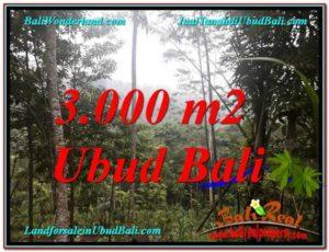 DIJUAL TANAH di UBUD Untuk INVESTASI TJUB617