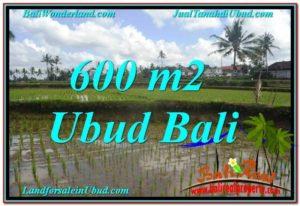 TANAH MURAH JUAL di UBUD BALI 600 m2 View sawah