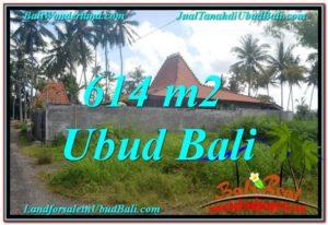 TANAH DIJUAL MURAH di UBUD BALI 614 m2 di Sentral Ubud