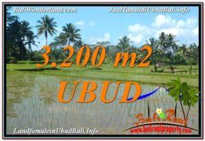 JUAL TANAH di UBUD BALI 3,200 m2 View Sawah dan Gunung Batur