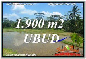 DIJUAL TANAH di UBUD 1,900 m2 di Ubud Payangan