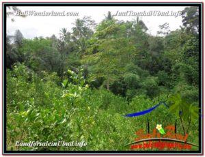 TANAH MURAH DIJUAL di UBUD BALI 5,600 m2 di Ubud Tegalalang