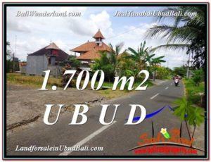 JUAL TANAH MURAH di UBUD 17 Are View Pangkung Link Villa