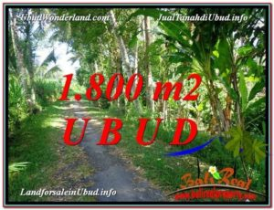 JUAL MURAH TANAH di UBUD 1,800 m2 View Sungai dan Tebing link Villa