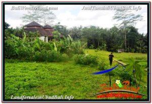 TANAH di UBUD DIJUAL MURAH 2,030 m2 di Ubud Tegalalang