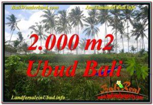 DIJUAL MURAH TANAH di UBUD BALI Untuk INVESTASI TJUB625