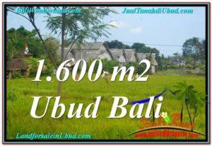 INVESTASI PROPERTI, TANAH MURAH DIJUAL di UBUD BALI TJUB633