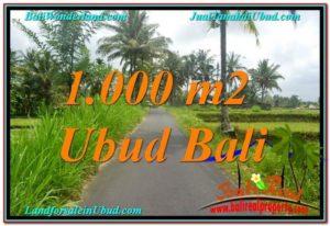 TANAH MURAH di UBUD BALI 1,000 m2 View Sawah, Link. Villa
