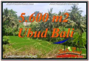 JUAL TANAH MURAH di UBUD BALI 56 Are View Sawah, Link. Villa