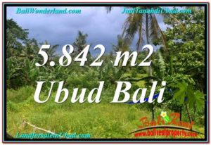 JUAL TANAH MURAH di UBUD BALI 58 Are View Tebing dan Sungai, Link. Villa