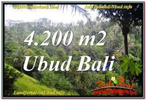 JUAL TANAH di UBUD BALI 42 Are View Tebing dan Sungai, Link. Villa