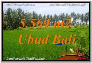 JUAL TANAH MURAH di UBUD BALI 5,569 m2 View Sawah dan Sungai Kecil