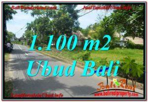 TANAH MURAH DIJUAL di UBUD BALI Untuk INVESTASI TJUB645