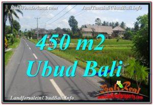 INVESTASI PROPERTY, TANAH di UBUD DIJUAL MURAH TJUB647