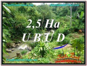 DIJUAL MURAH TANAH di UBUD BALI 26,000 m2 di Sentral Ubud