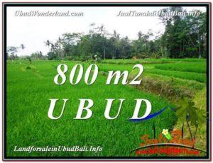 JUAL TANAH di UBUD BALI Untuk INVESTASI TJUB581