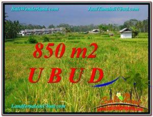 JUAL TANAH di UBUD BALI Untuk INVESTASI TJUB583