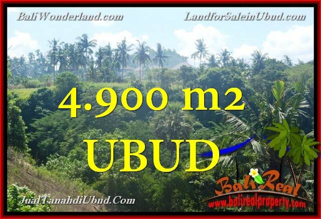 TANAH DIJUAL di UBUD BALI 49 Are di Ubud Gianyar