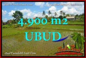 TANAH JUAL MURAH UBUD BALI 49 Are View Sawah link Villa