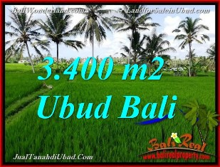 JUAL MURAH TANAH di UBUD BALI 34 Are View Sawah link Villa