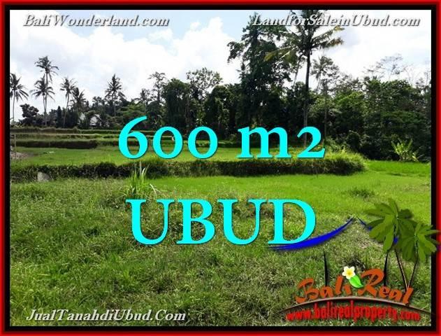 TANAH DIJUAL MURAH di UBUD 600 m2 di Ubud Pejeng