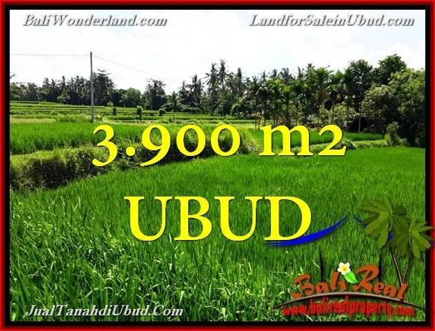 TANAH JUAL MURAH  UBUD BALI 39 Are View Sawah link Villa