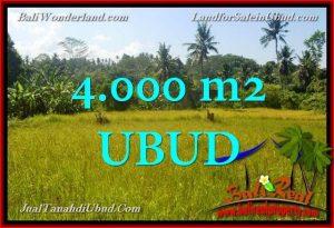 TANAH di UBUD JUAL MURAH 40 Are View Kebun / tebing
