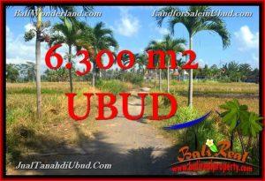 TANAH di UBUD BALI DIJUAL TJUB662