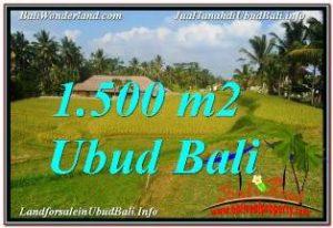TANAH MURAH JUAL   UBUD 15 Are VIEW SAWAH, LINGKUNGAN VILLA