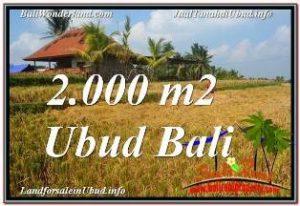DIJUAL MURAH TANAH di UBUD BALI Untuk INVESTASI TJUB669