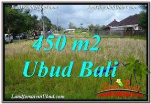 INVESTASI PROPERTI, DIJUAL MURAH TANAH di UBUD TJUB671
