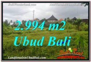 DIJUAL MURAH TANAH di UBUD 2,994 m2 di SENTRAL UBUD