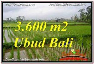 JUAL MURAH TANAH di UBUD BALI 36 Are VIEW SAWAH DAN VILLA